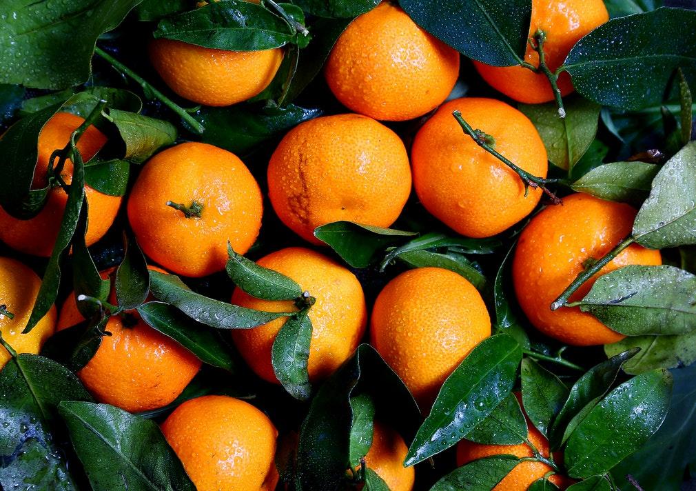 Cooking Class - Marmalade