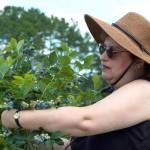 Simon's Berry Farm_edit
