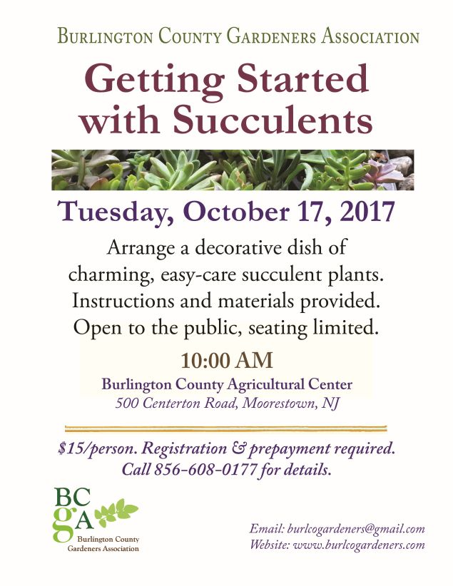2017-succulent-workshop-10-17-17-635-x-822