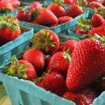 strawberries-_1_