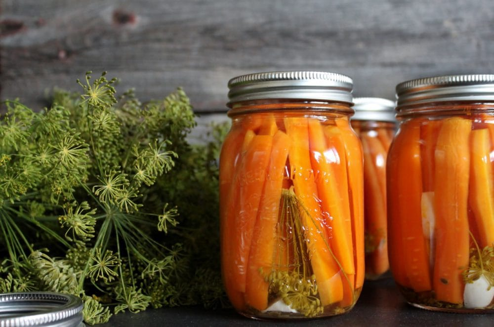 Dilly Pickled Carrots